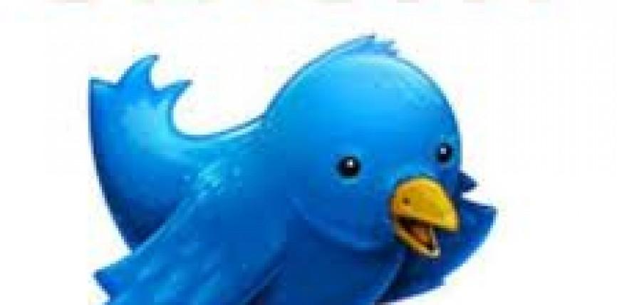 Twitter puede vender tus fotografías sin pagarte